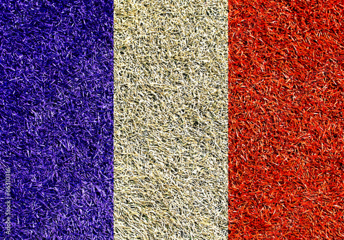 Papier Peint - France, the flag on the texture of the grass