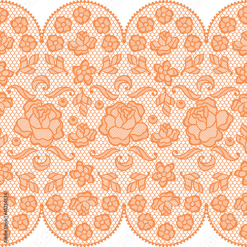 Papier Peint Vintage Lace Background Ornamental Flowers Vector Texture
